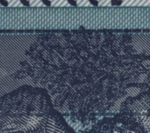 Figure 3 (b): Banknote with pixel shift