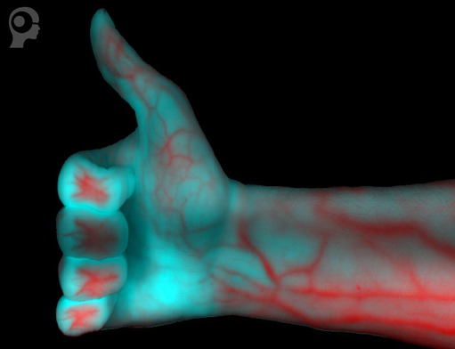 Hyperspectral system: Capture of a human hand