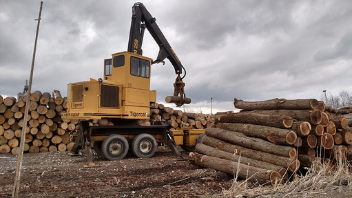 Case study Pike Lumber: Machine vision system optimises lumber processing in changing daylight conditions.